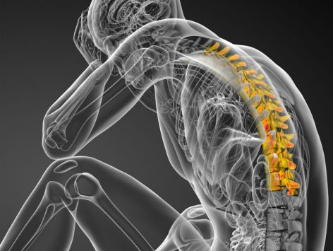 Thoracic Spine Thorax Entry To Practice Essentials